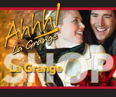 La-Grange-Home-Page-(Holiday)-Bug.jpg